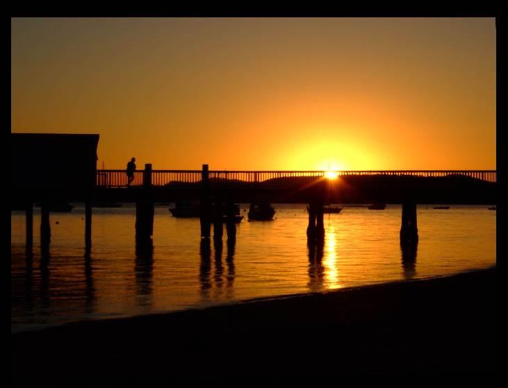 Coochie_Island_silvester 0255.jpg