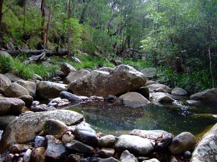 Mt Barney 057.jpg