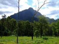 Mt Barney 028.jpg